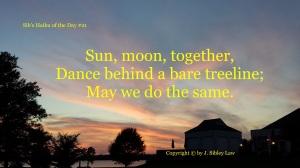 Sib's Haiku 021