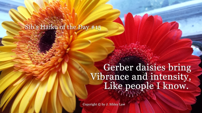 Sibs Haiku of the Day #015