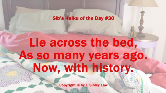 Sibs Haiku 030