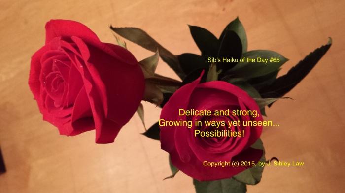 Sib's Haiku 065