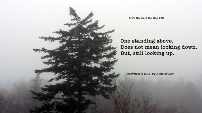 Sibs Haiku 072