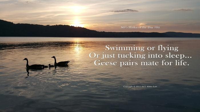 Sibs Haiku 084