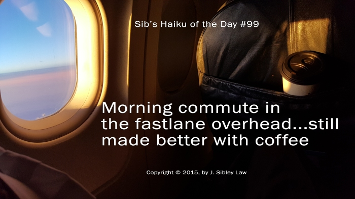 Sibs Haiku 099