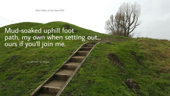 Sib's Haiku of the Day #102